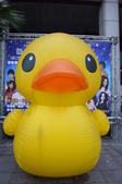 基隆黃色小鴨:基隆黃色小鴨14.JPG