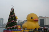 基隆黃色小鴨:基隆黃色小鴨2.JPG