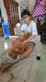 107個人照:DSC_0300小女兒替母嬌犬洗澡.JPG