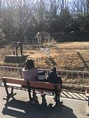 歆妤12~13歲:20180214-07-東山動植物園.jpg