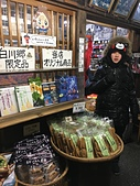 歆妤12~13歲:20180212-11-自駕悠遊尋雪趣-合掌村.jpg
