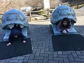 歆妤12~13歲:20180214-02-東山動植物園.jpg