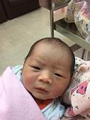 宇崴 週歲前:20180806-01-母嬰同室.JPG