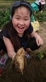 歆妤-9~10歲:20150328-004-奇美善化農場.jpg