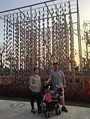 歆妤 13~14歲:20190228-05-台灣燈會 .jpg