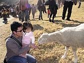 歆妤Baby-2~3歲:耶-來餵羊咩咩吧
