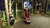 歆妤11~12歲:20170319-011-華山文創園區-Wooderful life 手創生活體驗展.jpg