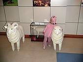 歆妤Baby-2~3歲:是國民賓館-榮民文物館裡的羊咩咩標本