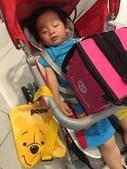 宇崴2歲~3歲:20200809-09-草衙道.jpg