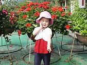歆妤Baby-2~3歲:是花比較漂亮還是我比較可愛ㄚ?!