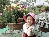 歆妤Baby-2~3歲:寺內種了好多很奇特的花草喔!