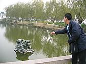 中國-上海&蘇州:蘇州-同里-羅星洲-許願池中龍嘴