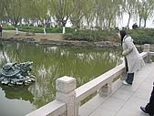 中國-上海&蘇州:蘇州-同里-羅星洲-許願池中龜背