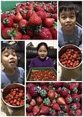 歆妤12~13歲:20180220-01-吃草莓.jpg