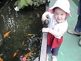 歆妤Baby-2~3歲:也有好幾個池塘喔!