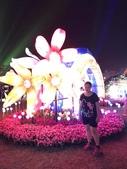 歆妤12~13歲:20180303-18-嘉義燈會.jpg