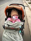 歆妤Baby-2~3歲:今天有點冷,所以要去看台灣燈會時一定要把全身包起來.
