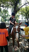 歆妤 10~11歲:20160424-020-小小騎士.jpg