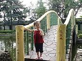 歆妤Baby-2~3歲:這是橋下的池塘是一個葫蘆的形狀喔!