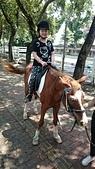 歆妤 10~11歲:20160424-022-小小騎士.jpg