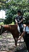 歆妤 10~11歲:20160424-024-小小騎士.jpg