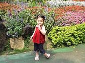 歆妤Baby-2~3歲:我真的好喜歡跟花一起比嬌呢?