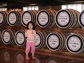 歆妤Baby-3~4歲:哇~好多酒桶喔!