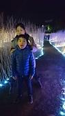 歆妤 10~11歲:20170121-006-月津燈節.jpg