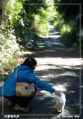 2011年合歡溪步道/天池:IMGP2946.jpg