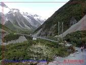 2020 紐西蘭〜庫克山國家公園:P1286542.jpg
