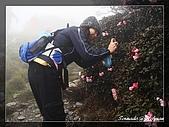 2010年合歡山:DSC07550.jpg