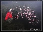 2010年合歡山:DSC07552.jpg