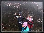 2010年合歡山:DSC07553.jpg