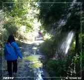 2011年合歡溪步道/天池:IMGP2948.jpg