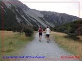 2020 紐西蘭〜庫克山國家公園:P1286517.jpg