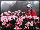 2010年合歡山:DSC07561.jpg