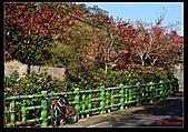 2011年小北橫單騎:DSC08896.jpg