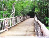 2005年彩虹的故鄉:帛琉:IMGP1073.jpg