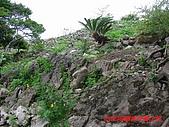 2008沖繩今歸仁城:PIC_1120.jpg