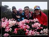 2010年合歡山:DSC07564.jpg