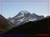2020 紐西蘭〜庫克山國家公園:P1286593.jpg