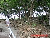 2008沖繩今歸仁城:PIC_1123.jpg