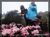2010年合歡山:DSC07565.jpg