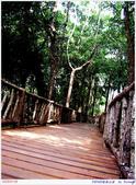 2005年彩虹的故鄉:帛琉:IMGP1075.jpg