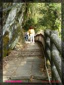 2012年歲末東埔溫泉之旅:L1000470.jpg