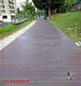 2020 桃林鐵路鐵馬道:IMG_20201025_081331.jpg