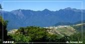 2011年合歡溪步道/天池:IMGP2952.jpg