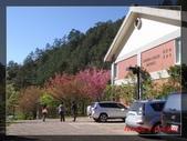 2010七卡淨山:DSC07272.jpg