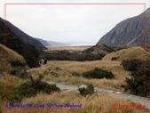 2020 紐西蘭〜庫克山國家公園:P1286641.jpg