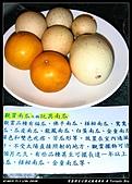 2010年與我同行之武陵遊憩區:PIC_5642.jpg